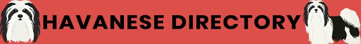 Havanese Directory Banner Ad