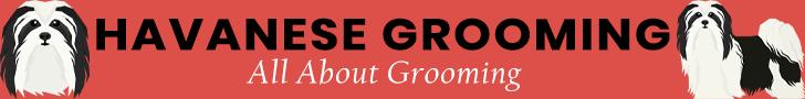 Havanese Grooming Banner Ad